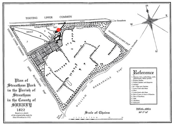 Simplified map of Streatham Park by Ethel Bromhead, based on the 1822 survey (above). See also www.thrale.com for a detailed account of the history of the estate. The red dot marks the approximate site of the Colson Way mulberry with respect to the estate