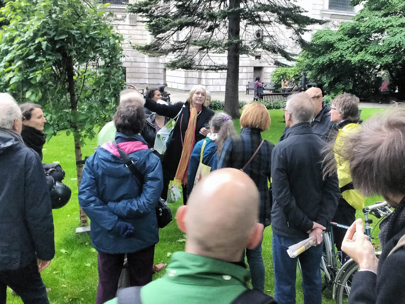 Discussing the weeping white mulberry in St Paul's grounds during the walk