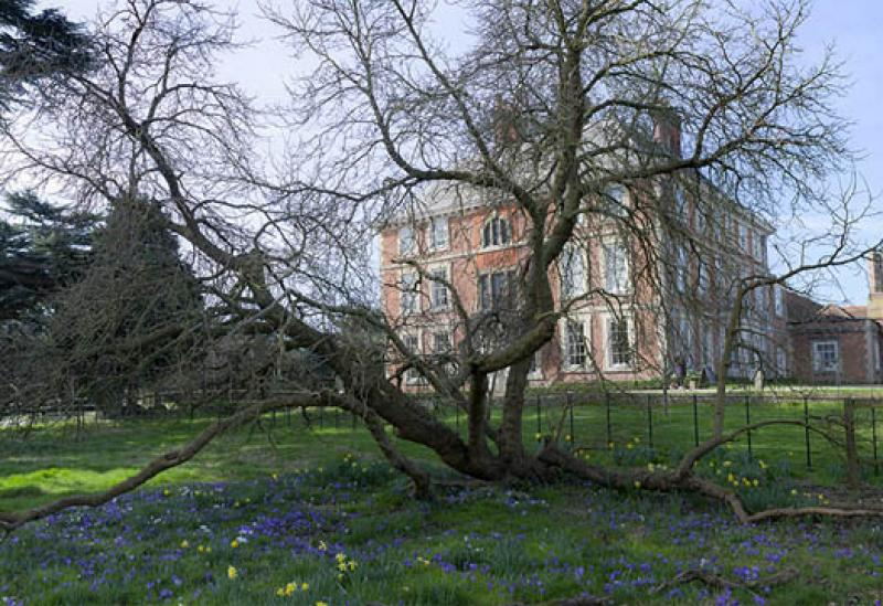 Photo of Forty Hall